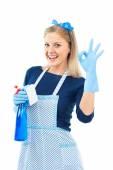 Hausfrau mit Putzspray