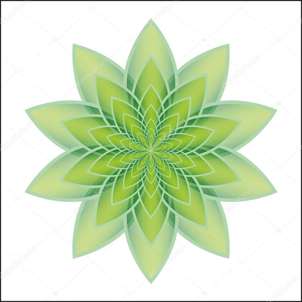 Verde De La Flor De Loto Vector De Stock Elenakravchenko 82265098