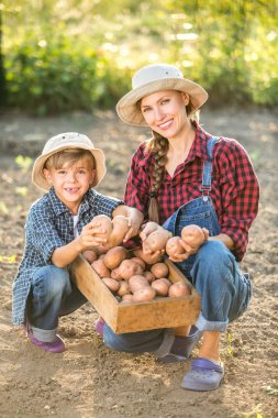 Family working in summer garden