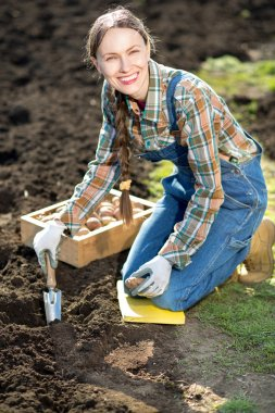 Happy smiling caucasian female farmer or gardener in a hat holding potato going to plant. Agriculture - food production, home grown food concept stock vector