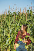 Fotografia agricoltore nel campo