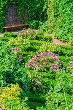 Gardens, flowers, flower beds, herbs