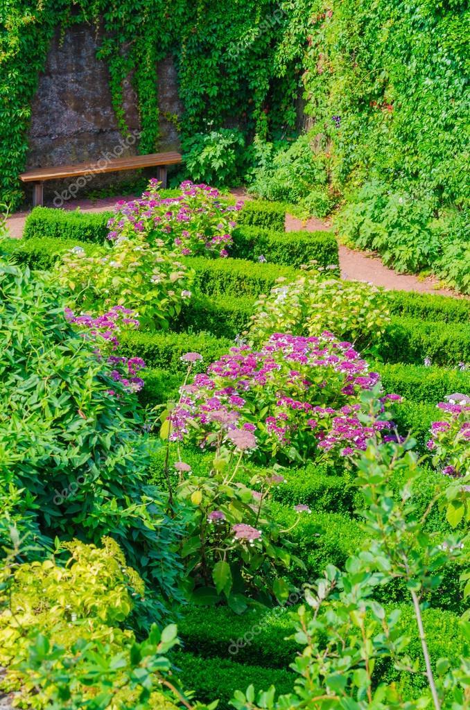 Jardines, flores, flores, hierbas — Foto de stock © NikD51 #55723981