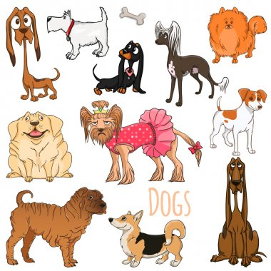 Vector set of funny cartoon dogs.Vector illustration