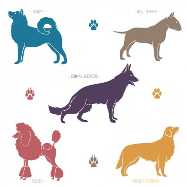 Set of different dog breeds silhouettes.