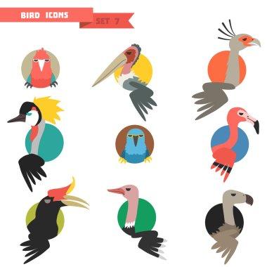 Exotic tropical bird set with flat design.