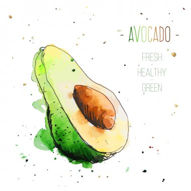 Watercolor avocado with splashes in free style. Fresh and juicy colors. Hand drawn isolated on white background.