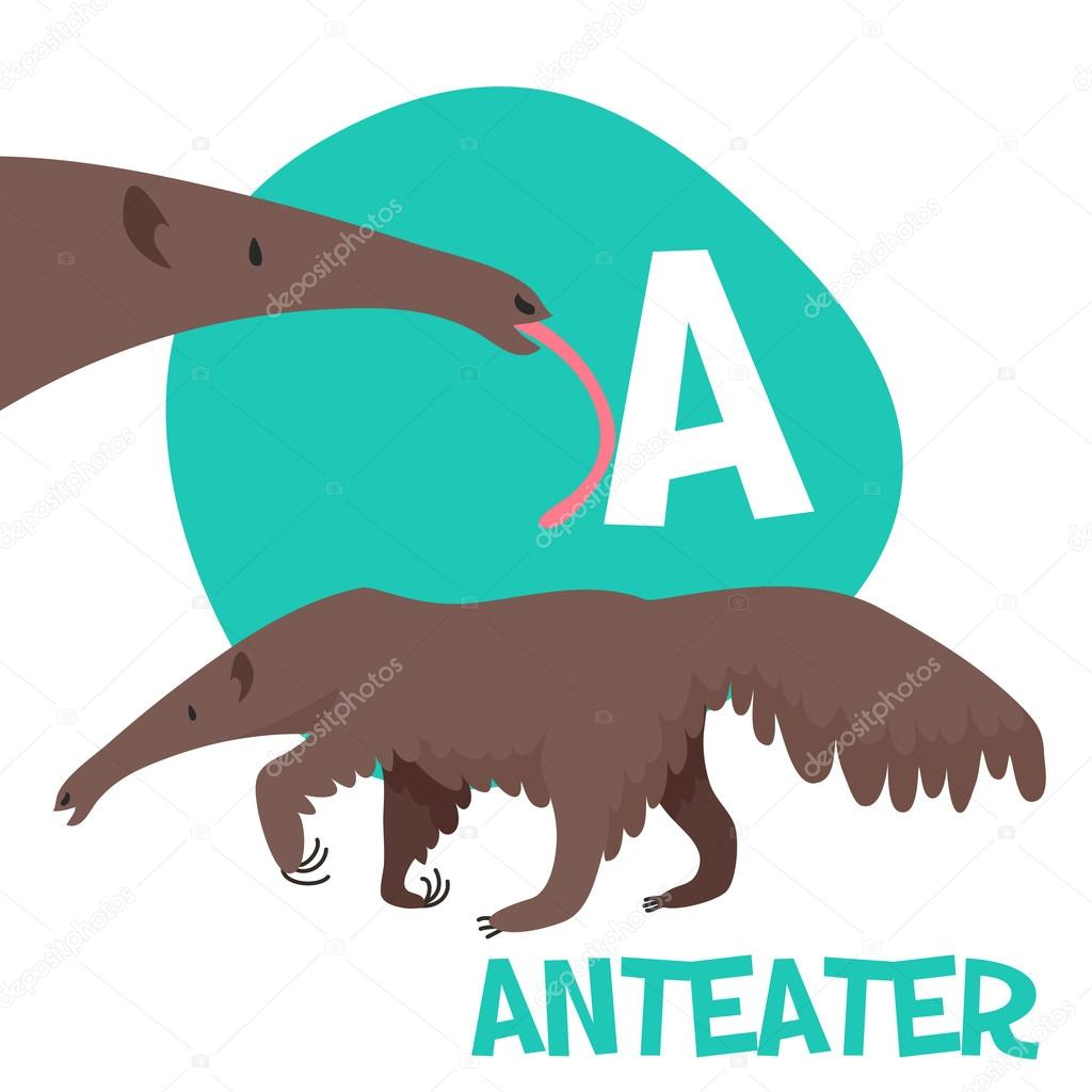 a report on the anteaters The giant anteater is currently listed in a threat category in virtually all regional and national red lists (unpublished report provided by i schappert.