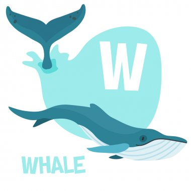 Funny cartoon animals vector alphabet letter set for kids. W is Whale