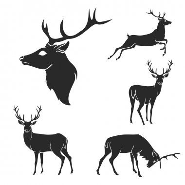 Set of black forest deer silhouettes. Suitable for logo, emblem, pattern, typography etc. Isolated black on white background. Vector illustration stock vector