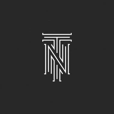 Initials NT letters logo