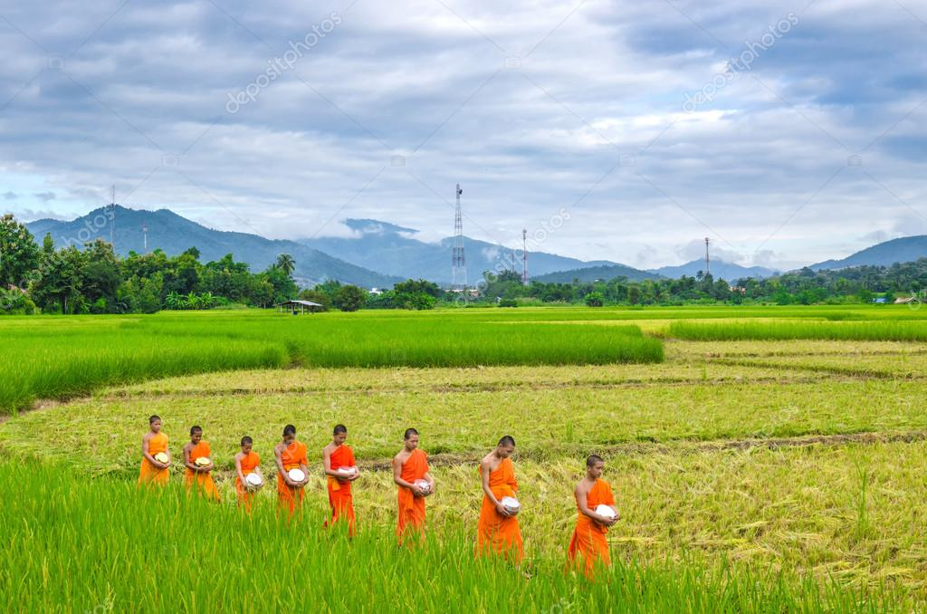 CHIANGMAI, THAILAND - OCT 24: Every day very early in the morning, the monks walk in the field to beg give food offerings to a Buddhist monk on Oct 24, 2014 in Maechaem, Chiangmai, Thailand