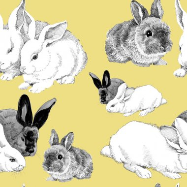 sketched rabbits pattern