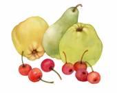 Fotografie Äpfel, Birnen und Kirschen