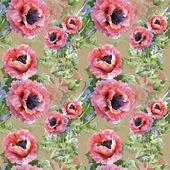 kvete mák Květiny