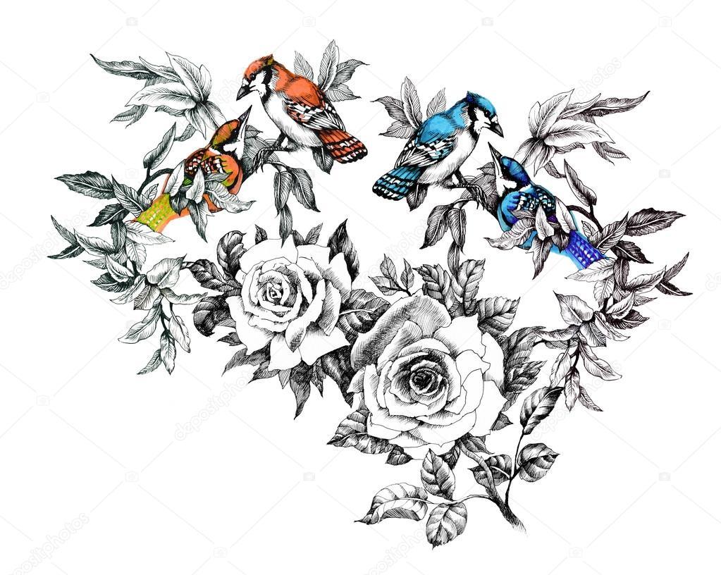 Fotos Rosas Para Dibujar Patrón De Dibujo Con Aves Y Rosas Flores