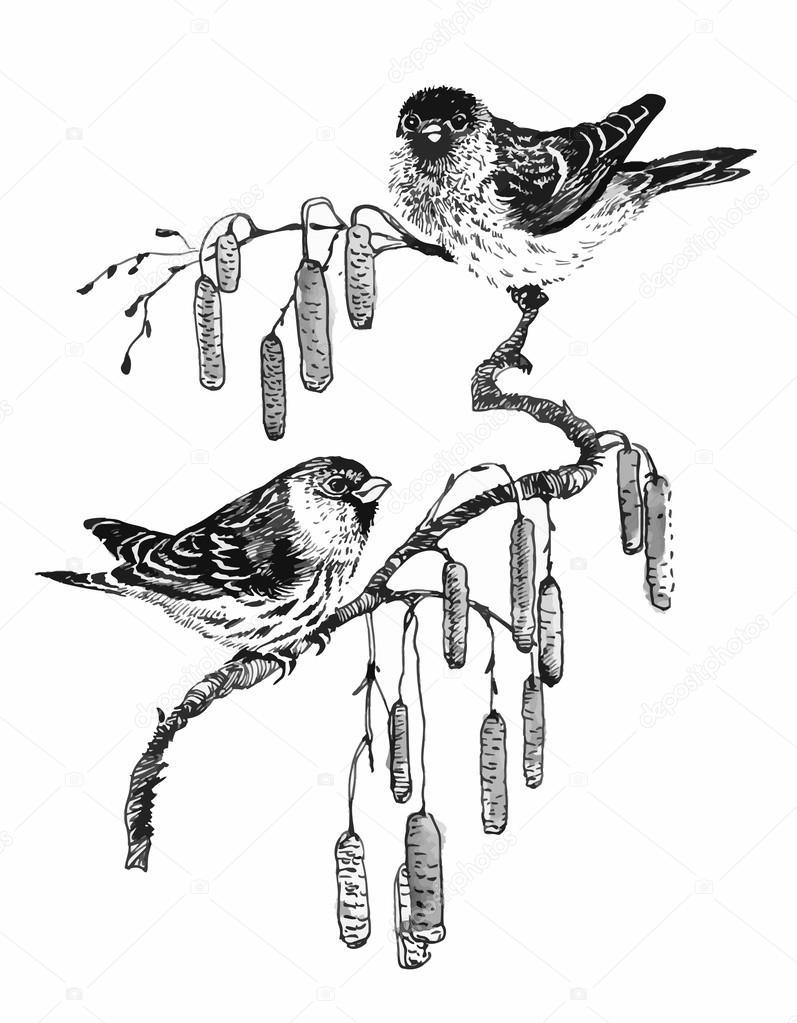 Vögel am Zweig Skizze Abbildung — Stockvektor © Kostan-PROFF #121001086