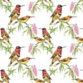 varrat nélküli mintát, madarak és virágok