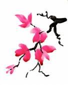 Fényképek orchidea virágok
