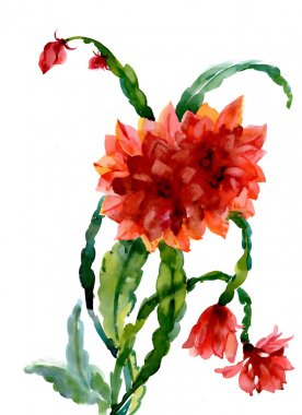 Watercolor red flowers bouquet
