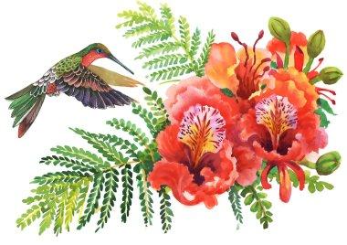 blooming Watercolor hibiscus and humming-bird
