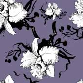 Fényképek Orchidea virágok virágos háttér