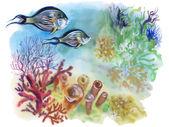 Photo Marine life   with Tropical fish