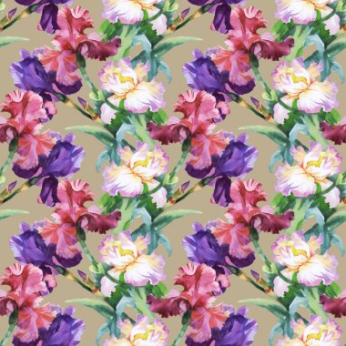 Pattern with colorful Iris flowers