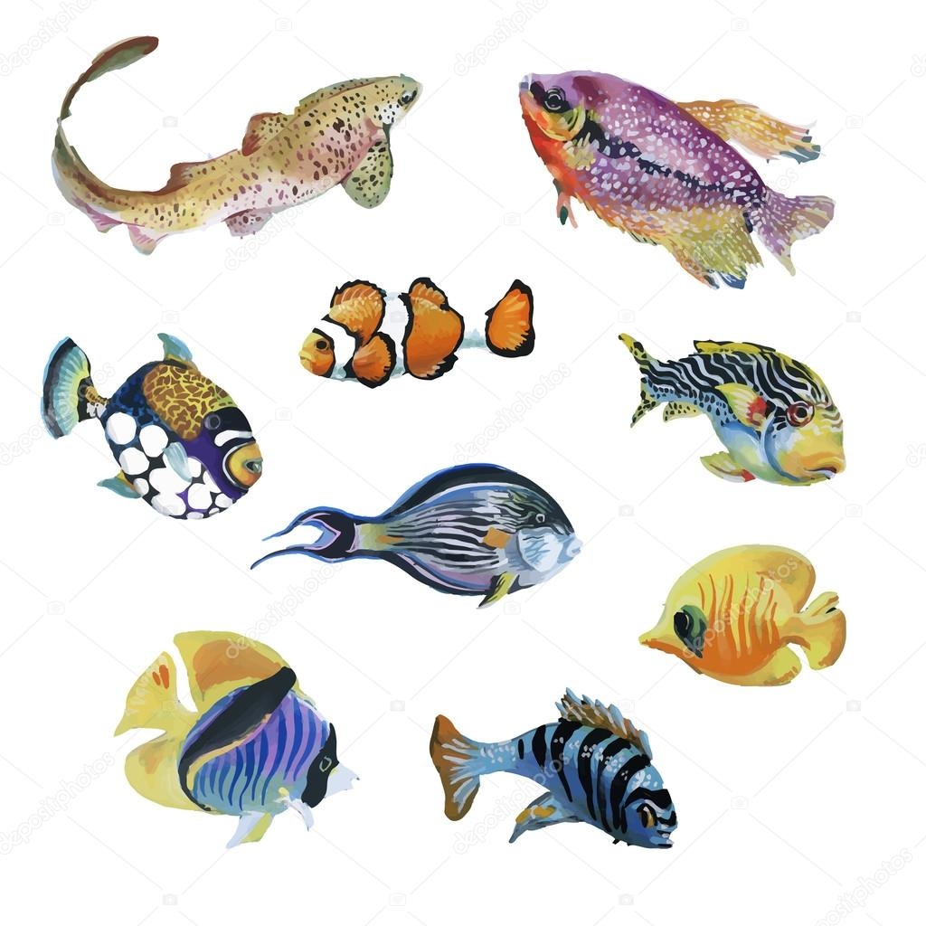 Marine life watercolor set with Tropical fish