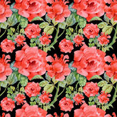 Fotografia Rose da giardino fiori di fioritura