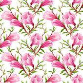 Kvetoucí magnólie květiny