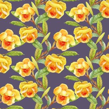 garden blooming yellow gorse flowers