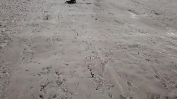 Kinderrodeln im Schnee, Kind spielt im Winter, kleines Mädchen rodelt abends im Park.