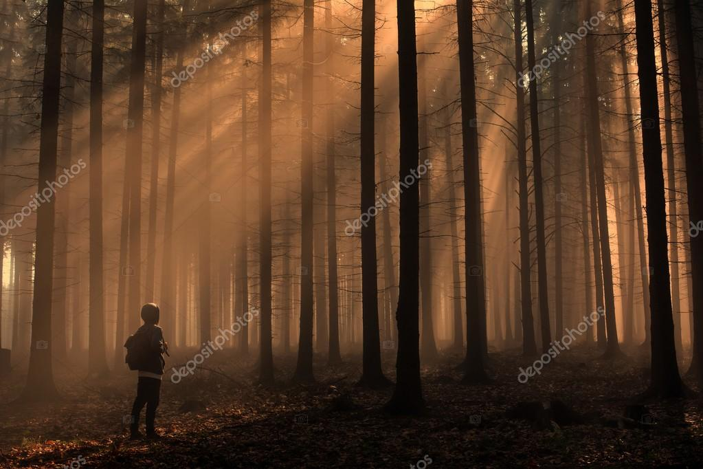 Man in beautiful foggy autumn forest with sun rays
