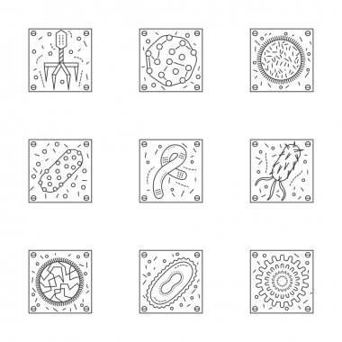 Microorganisms line icons vector collection