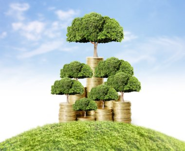 money tree growing from money