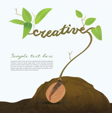 Creative seed idea abstract info graphic