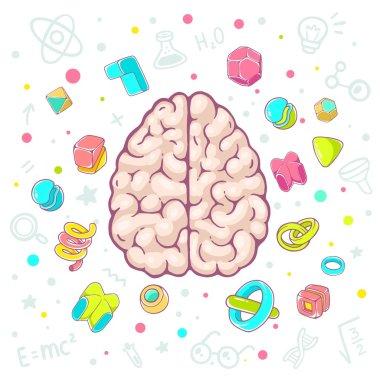 illustration of model of human brain