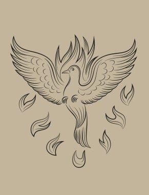 Dove Holyspirit fire