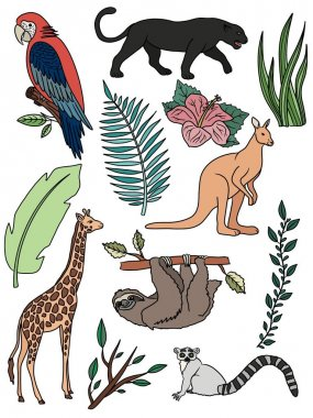 Set of animals. Coloring page