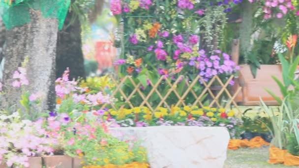 Wood swing in the flowers garden on summer, HD vdo.