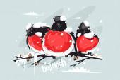 Funny bullfinches on tree