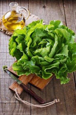 Butter lettuce over wooden rustic background