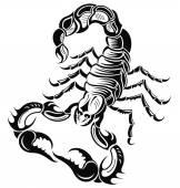 Fotografia Scorpione nero
