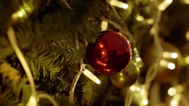 Detailní záběr několika červených plastových vánočních míčků zavěšených na vánoční jedli. Akciové video. Barevné dekorace a reflektory. Barevné vánoční ozdoby visící na stromě. Bauble. Happy