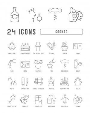 Cognac. Collection of perfectly thin icons for web design, app, and the most modern projects. The kit of signs for category Food and Drink. icon