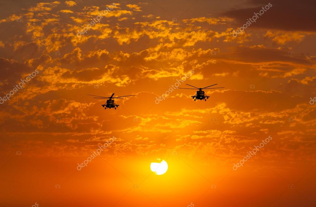 Group of combat helicopters