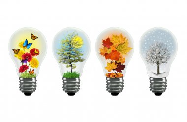 Illustration of seasons in lightbulbs