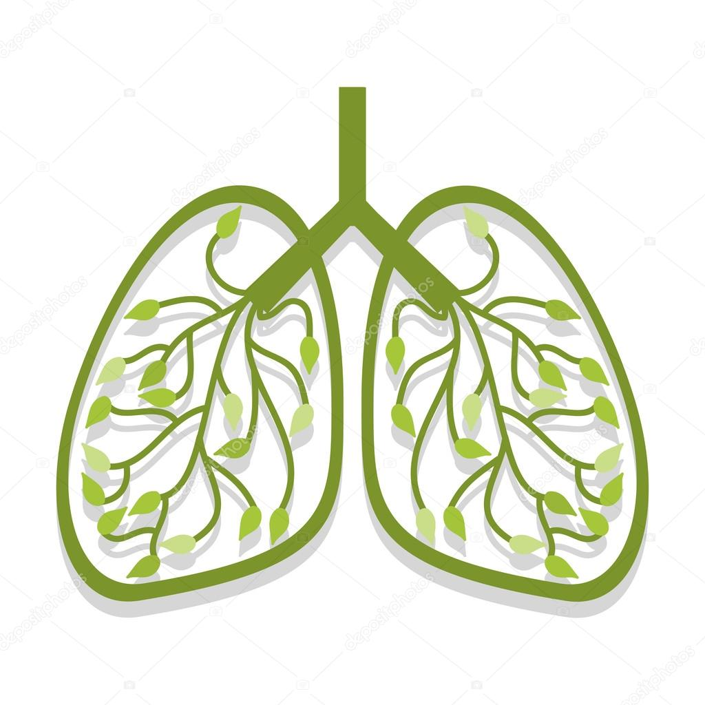 Human lung icon tree leaves