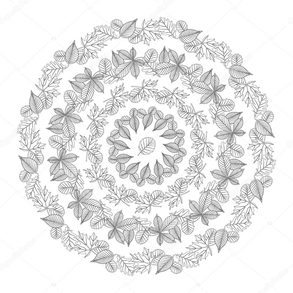 vector coloring book page circular pattern mandala autumn